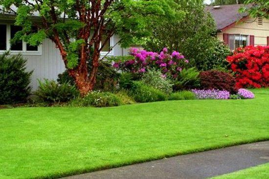 Секреты оформления лужайки в природном стиле 2
